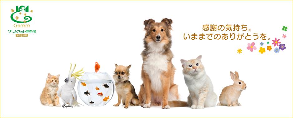 平成元年創業。東京八王子のペット霊園ならグリムペット葬祭場へ。ペットの火葬や葬儀を誠実にご対応させていただきます。